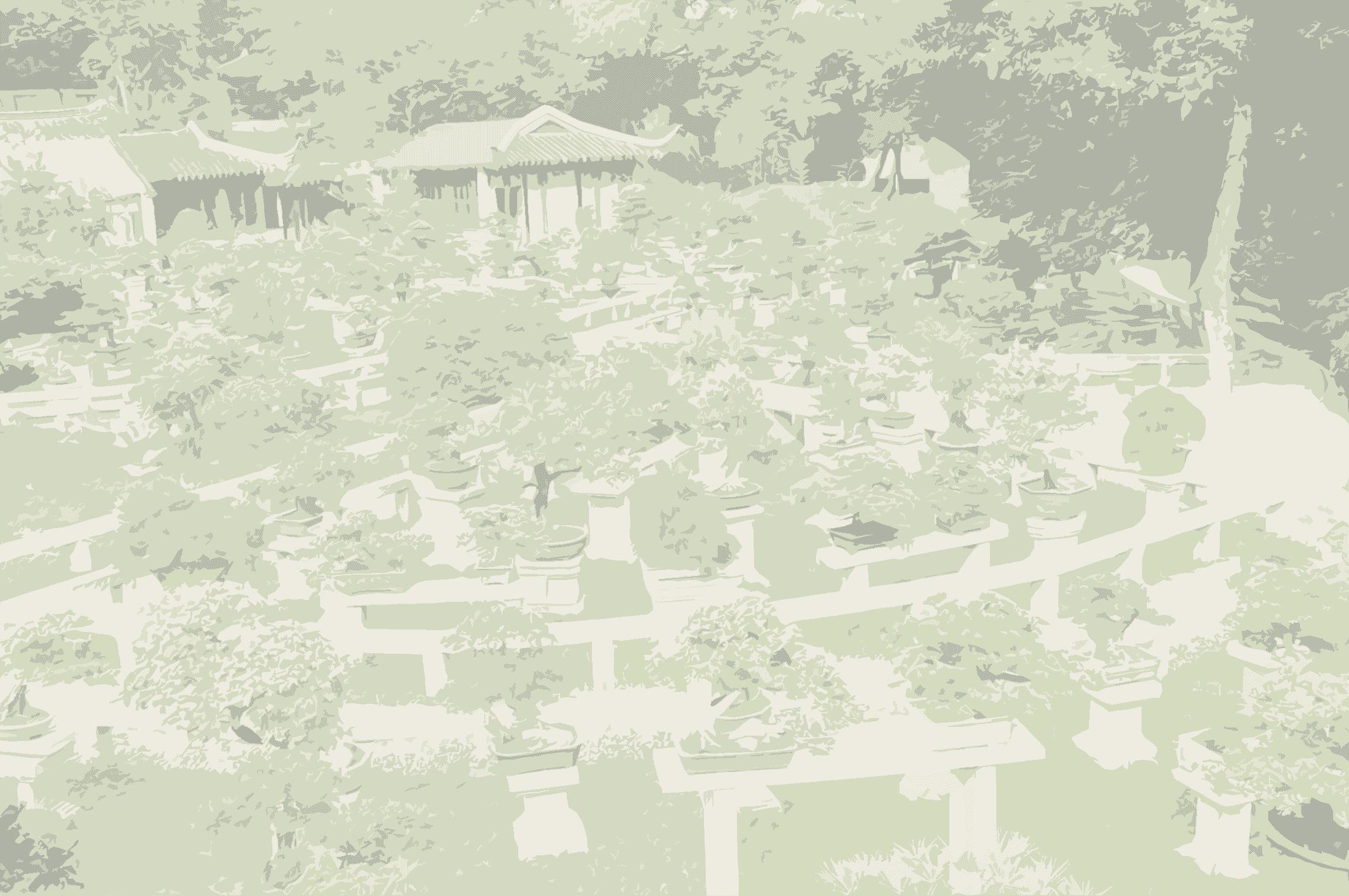 bonsai garden background