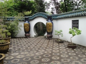 bonsai binnentuin