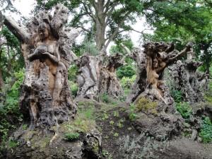 bonsaiboom beeldhouwwerken cijfers